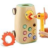 BBLIKE Montessori Spielzeug Magnetisches Kinderspiel, 3-IN-1 Ziehen Entlang Bus Spielzeug Wurm Fangen Spiel Hämmerchenspiel für Mädchen Junge 2 3 4 Jahre Alt, Nicht elektrisches Spielzeug
