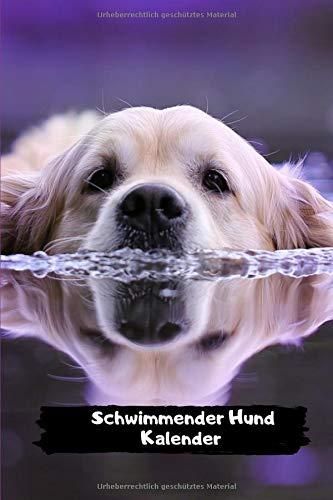 Schwimmender Hund Kalender: Kalender 2020