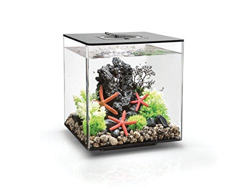 OASE biOrb CUBE 30 LED Aquarium, 30 Liter - Aquarien Komplett-Set mit LED Beleuchtung und patentiertem Filter-System, Acryl-Becken in Schwarz