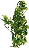Exo Terra 544190 Terrarium Plant Amapallo Shrub Plastic, Medium