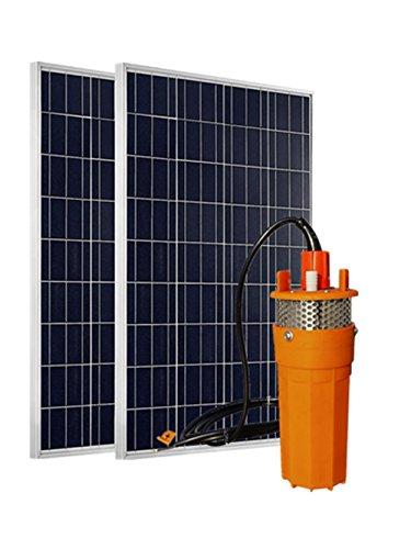 ECO-WORTHY Sistema de agua con energía solar de 24 voltios, panel solar fotovoltaico policristalino 2pcs100W + 1pc 24V Bomba de agua solar sumergible con filtro de acero inoxidable