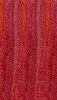 Best plymouth select worsted merino superwash hand dyed Reviews
