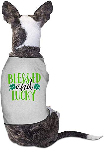 Blessed Lucky Dog Clothes Cute Print Pet Cat Camisas Soft Birthday Outfit-Small