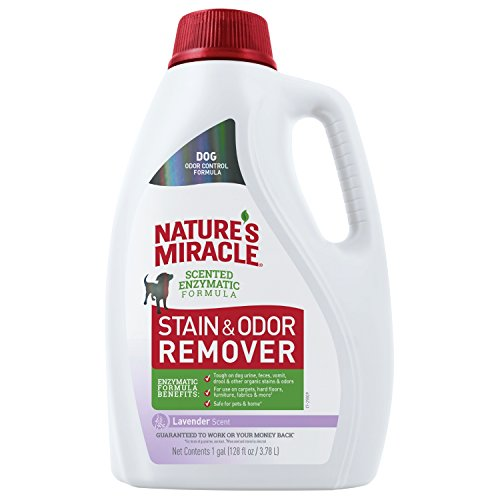 Nature's Miracle P-98155 Dog Stain and Odor...