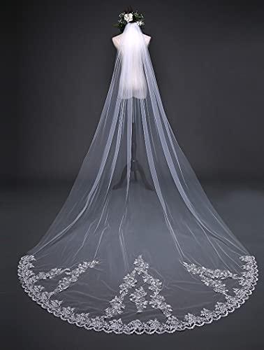 HUIJK Veil Bride Long 3 Meters Lace Veil Fairy Beauty Wedding Long Tail Wedding Accessories Bridal Accessories (Color : White, Item Length : 300cm)