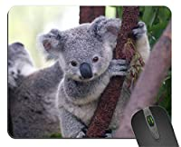 1 X Koala Design Square Rectangular Gaming Mousepad Durable Office Accessory Rubber Mousepad Mat [並行輸入品]