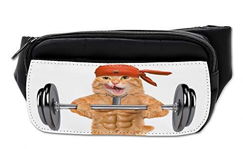 Fitness Cat Lifting Dumbbell