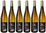 Bottiglia da 75 cl Aromi: delicate note di noce moscata, noci e frutta con nocciolo. Vitigno:müller thurgau