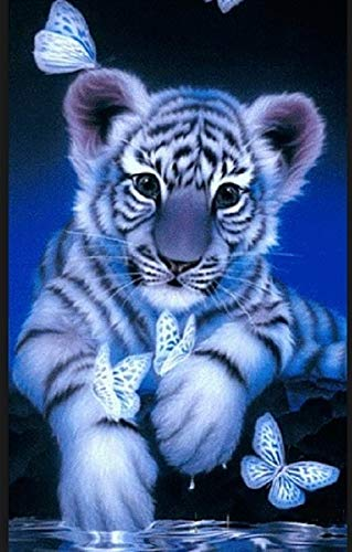 A4 Framed! Waterside Tiger and Butterfly Diamond Art / Fully Stick (210mm 297mm) / Square (Square) Beads/Craft Kit