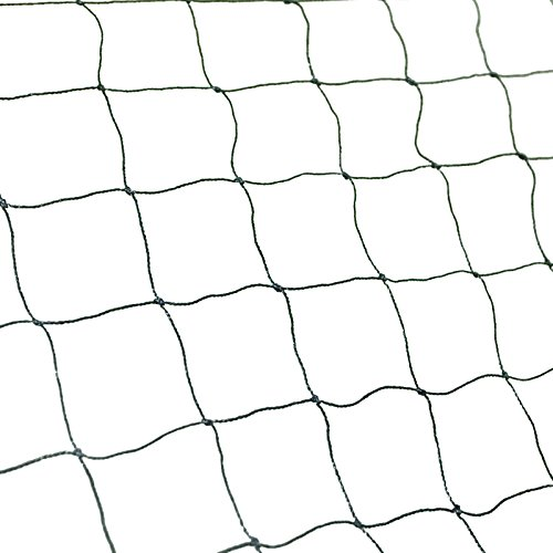Bird Netting 50' X 50' Net Netting For Bird Poultry Avaiary Game Pens New