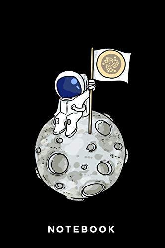 Notebook: IOTA Astronaut