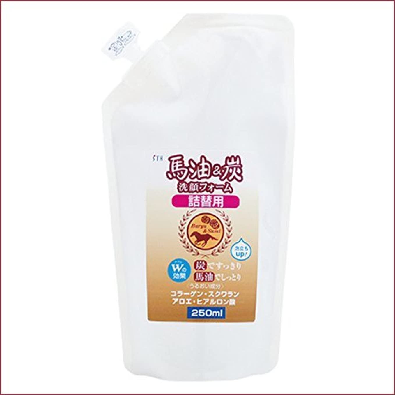 休眠キルト城馬油&炭 洗顔フォーム 詰替用 250mL