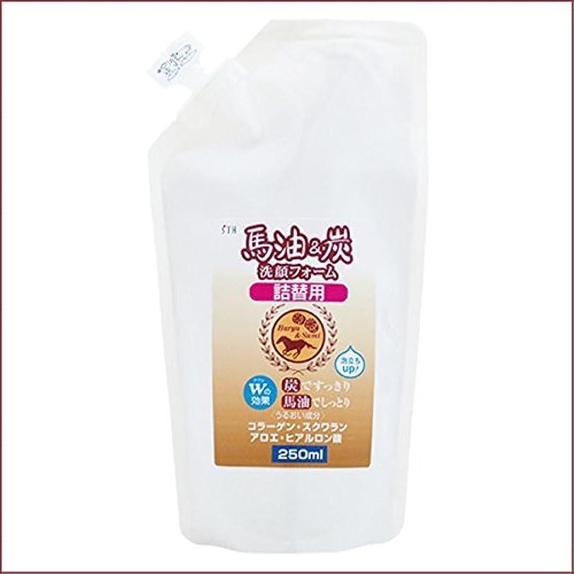 呪いレンダーベスト馬油&炭 洗顔フォーム 詰替用 250mL