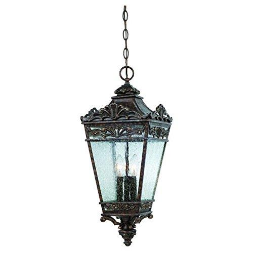 Savoy House Maguire 3 licht buiten hangende lantaarn
