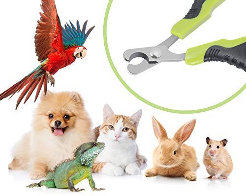 Pecute Professionelle Katze Nagelknipser Nagelschere Krallenschere Scherschneider für Katze Welpen Kaninchen und andere kleine Tiere - 3