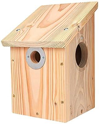 Wildlife World Camera Ready Nest Box from Wildlife World