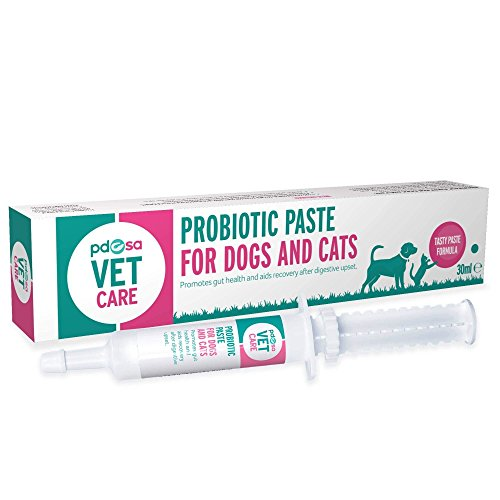 PDSA Vet Care Probiotic Paste for Dogs and Cats 32ml
