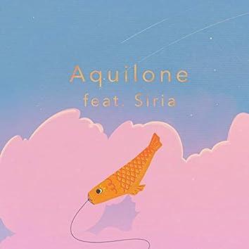 Aquilone (feat. Siria)