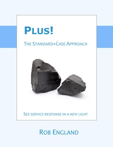 Plus! The Standard+Case Approach (English Edition)