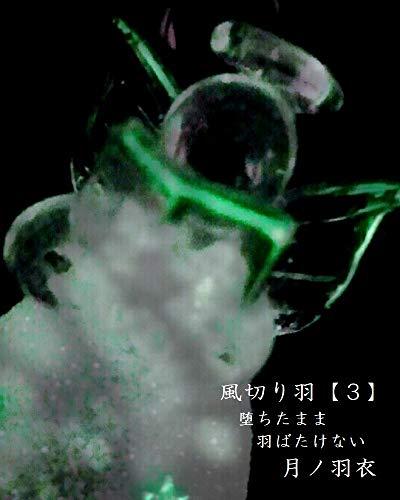 風切り羽【3】: 堕ちたまま羽ばたけない