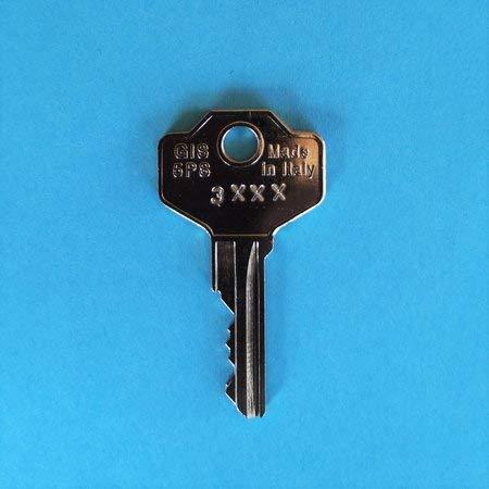 Ersatzschlüssel für ältere Thule Combi und Hifly Dachboxen, Skiboxen. Schlüsselcode 3001 bis 3480. Der Schlüssel ist einseitig gefräst! Schlüssel G - Code 3386