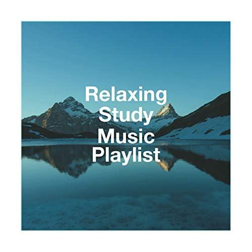Radio Zen Music, Studying Music, Dormir Bien
