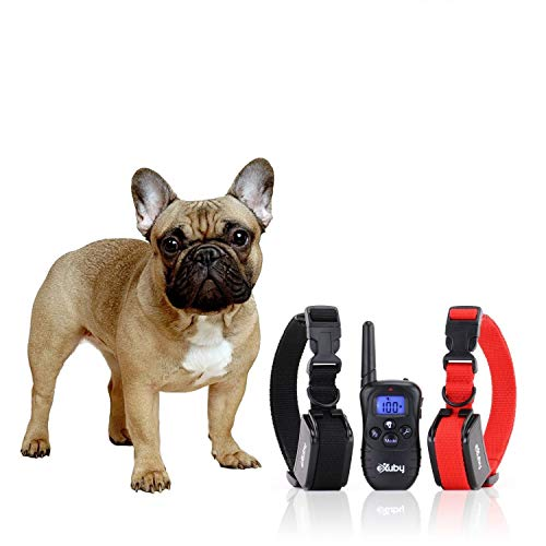 eXuby 2X Shock Collar for Small Dogs w/ 1 Remote & Training Dog Clicker - 3 Modes (Sound, Vibration & Shock) - Rechargeable Batteries - Very Fast Results