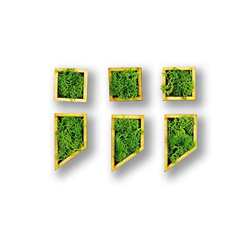 Moosly Moo – Punto Komma Satzzeichen – con marco de madera, musgo Deko letras signos símbolo Número Letra Madera con Real Islandmoos adhesivo pared pared pared pared adhesivo adhesivo salón