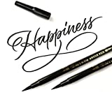 Art-n-Fly Dual Tip Black Brush Pens for Lettering Calligraphy Pen. Fine and Large Black Brush Marker for Drawing (Pack of 2)