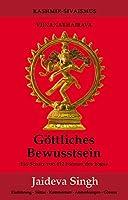 Goettliches Bewusstsein - Vijnanabhairava: Ein Schatz von 112 Formen des Yoga