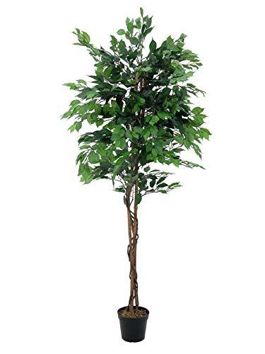Ficus Benjamina Artificial