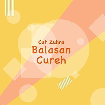 Balasan Cureh