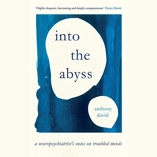 Into the Abyss Audiobook By Anthony David cover art