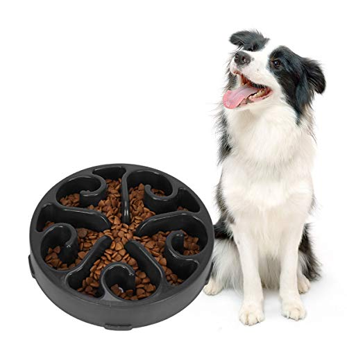 dog bowls that slow down eating - 9