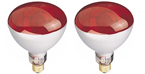 One of the best heat lamps for plants in winter:Westinghouse R40 250 Watt Red Reflector Bulbs