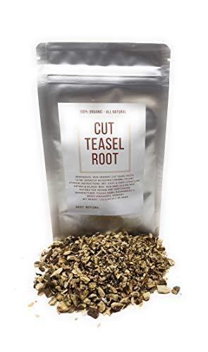 Teasel Root (Teazel / Teazle) - Dried, Cut and Organic Dipsacus Silvestris - Net Weight: 1.23oz/35g