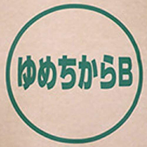 【業務用】北海道産 パン用超強力粉 ゆめちから 100% 2.5kg