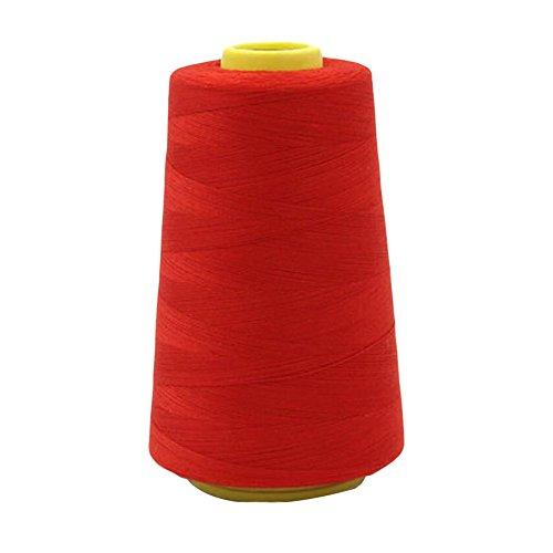 Máquina de bordar Hilo Herramientas de coser Hilo de bordado Hilo de coser Hilo-Rojo