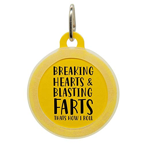 Personalized Breaking Hearts and Blasting Farts Pet ID Name Tag with Silencer for Cats or Dogs by Oh My Paw'd