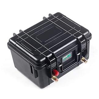 12V 100Ah Lifepo4 Akku Pack mit BMS-Schutz von LQQ