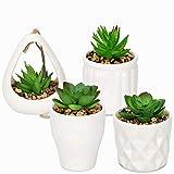KADAX Sukkulenten mit Topf, 4er Set, kleine Kunstpflanze, Künstliche Topfpflanzen, Topfblumen, Faux Pflanze, Deko Pflanze für Wohnzimmer, Büro (Weiß)