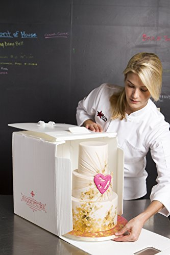 """Innovative Sugarworks Small Cake Porter with Insulated Cover and Cake Carrier, 14"""" x 14"""