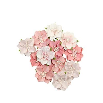 Prima Marketing Mulberry Paper Flowers-Ripe Berry/Fruit Paradise, 12/Pkg