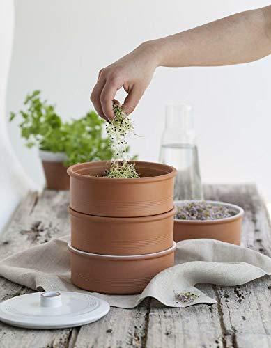 Tour d'échantillon élégant en terre cuite - Avec 100 g de mélange