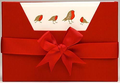 Julie Bell - Luxe gestempeld briefpapier - Kerst Robins - 10 Notitiekaarten & Enveloppen