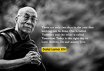 Dalai Lama XIV There are Only Poster Print Picture or Framed Photograph  13x19 Unframed Poster