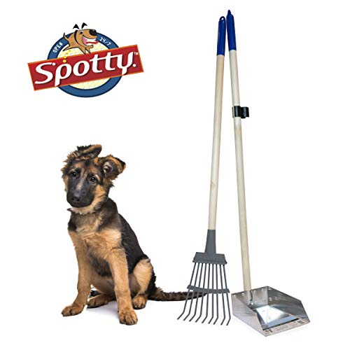 Top poop scooper for dogs 36 for 2020
