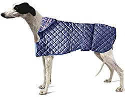 quilted lurcher dog coats