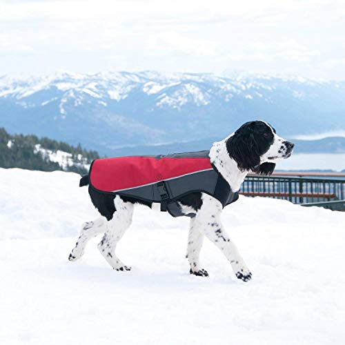 EzyDog Element Best Dog Jacket - Premium Wind and Waterproof Reflective Dog Coat for Safety and Protection - Provides Leash Access to Harness or Collar (Scarlett, Medium)