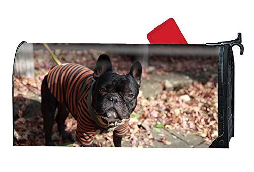 Verna Christopher Eule Adler Eule Schnabel Vogel Profil Magnetische Briefkasten-Abdeckung Deko Garten Outdoor Individuell Briefkasten-Wrap Standard one Size Bulldog Dog Costume Walk3